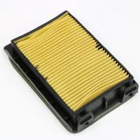 Элемент воздушного фильтра LX250GS-2A